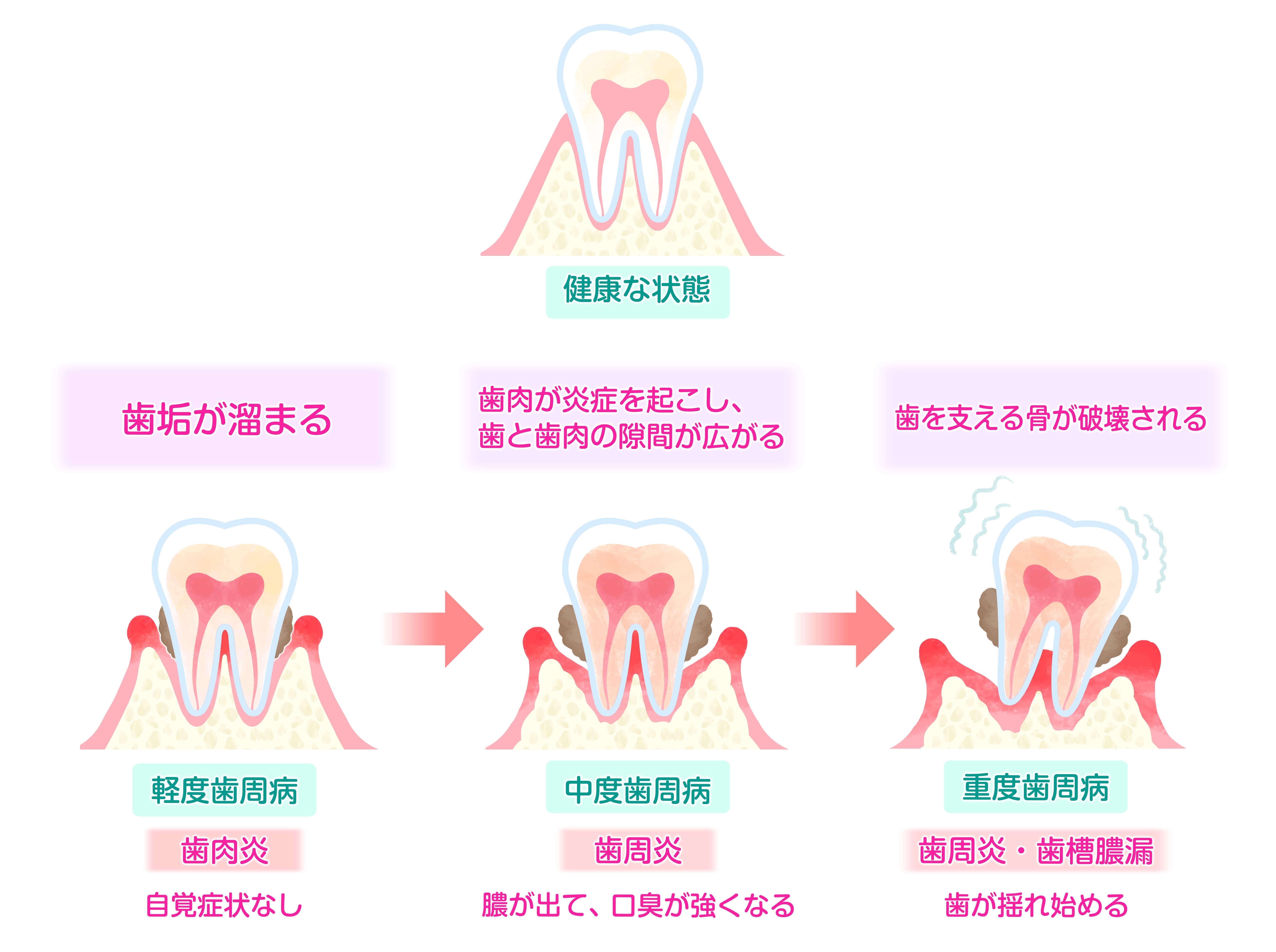210830_修正イラスト歯科-min.jpg