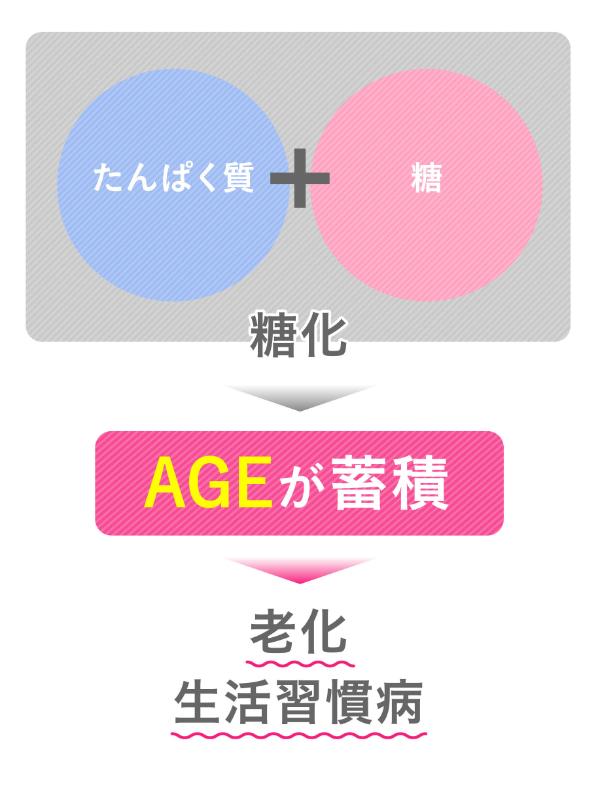 画像_1.jpg