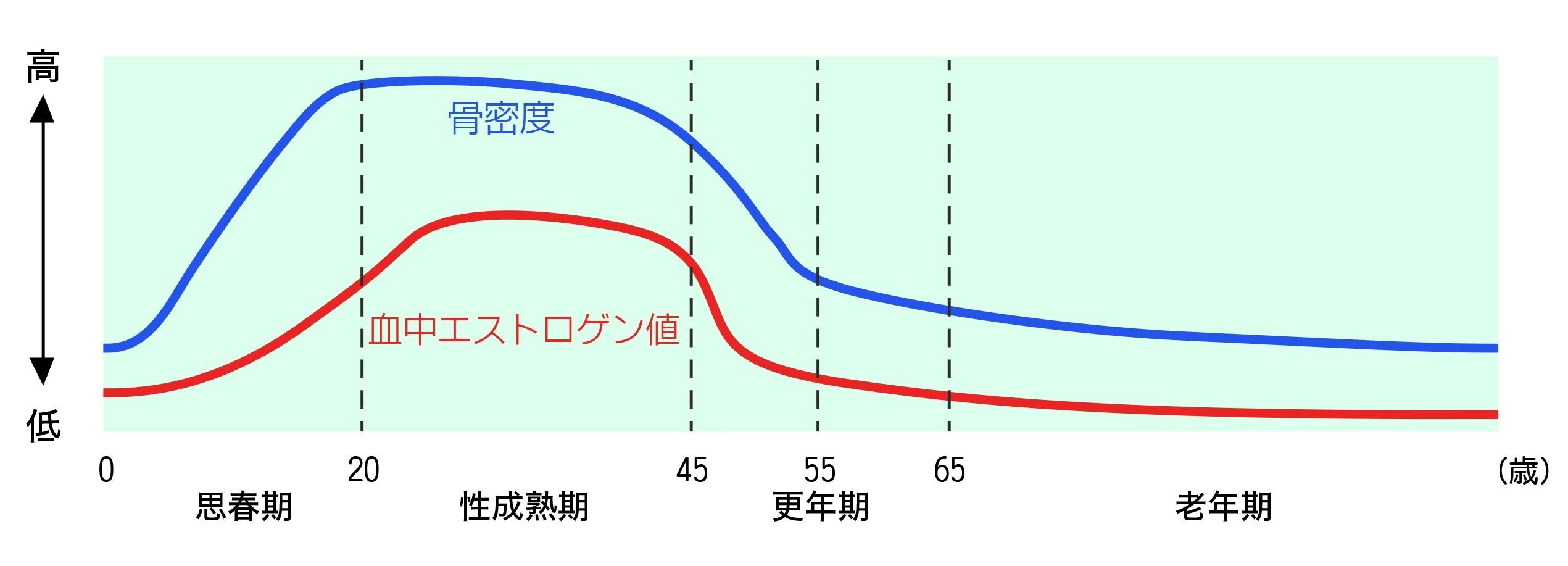 ISIGAKISENNSEI_graph.jpg