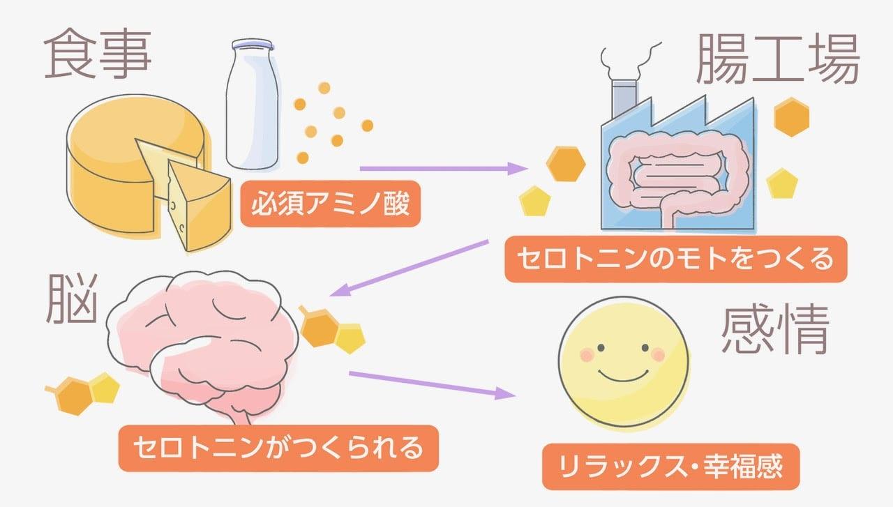 幸せホルモン_2_3-min.jpg
