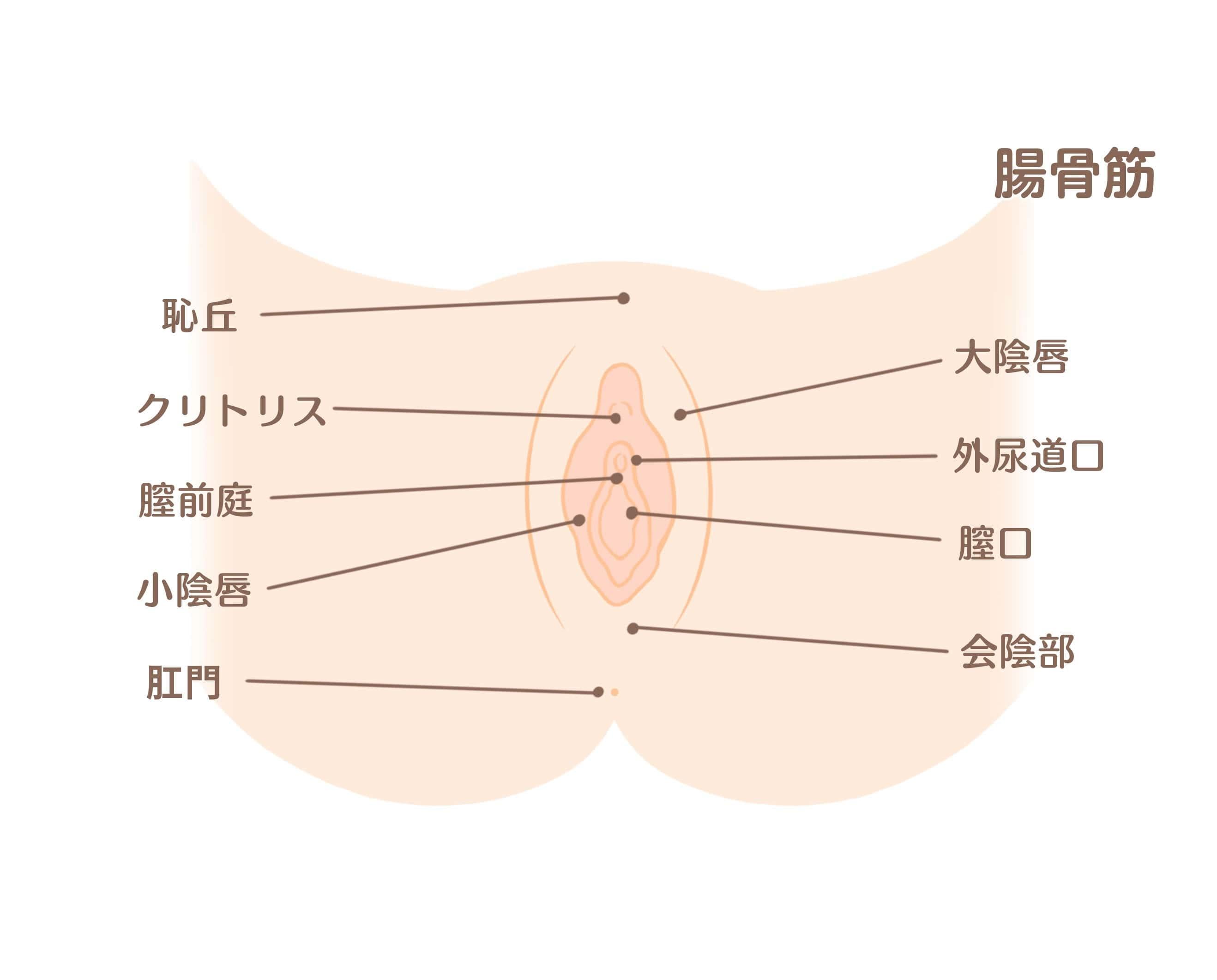 デリケートゾーン_2-min.jpg