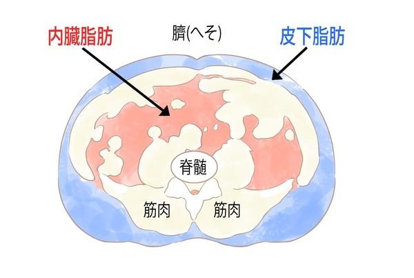 watanabesennsei01 (1).jpg